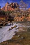 Cascata di Zion Immagine Stock