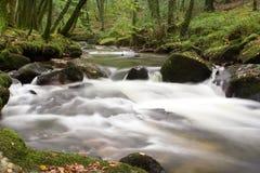 Cascata do rio Imagem de Stock