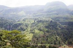 Cascata e colline nell'alpeggio accanto a Nuwara Eliya nello Sri Lanka centrale Fotografia Stock