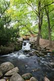 Cascata e corrente al parco di Oliwa Fotografia Stock Libera da Diritti