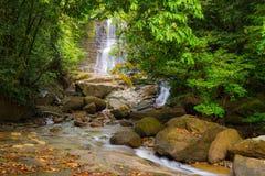 Cascata e corrente nella foresta pluviale del Borneo Immagine Stock Libera da Diritti