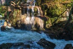 Cascata e fiume Immagine Stock