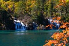 Cascata e lago pacifico Immagine Stock