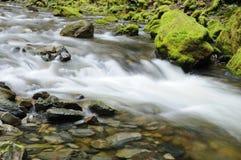 Cascata e pedra Fotos de Stock