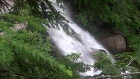 Cascata e piccolo fiume fra la natura stock footage