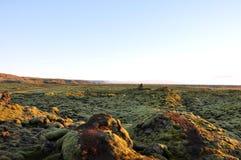 cascata e raggruppamento Muschio-coperti Fotografie Stock