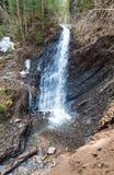 Cascata e ruscello in burrone della foresta della montagna Fotografie Stock