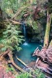 Cascata e uno stagno blu in profondità nel legno fotografie stock