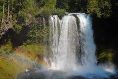 Cascata ed arcobaleno in una foresta di vecchia crescita Fotografia Stock