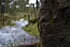A cascata em Apatlaco6 Foto de Stock