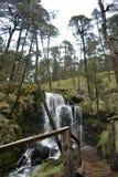 A cascata em Apatlaco Foto de Stock