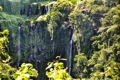 Cascata esotica in Mauritius Fotografie Stock Libere da Diritti
