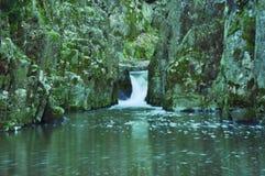 Cascata in foresta fotografia stock libera da diritti