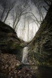 Cascata in foresta con le scogliere Fotografia Stock