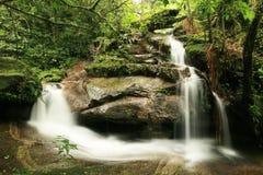 Cascata in foresta pluviale Fotografie Stock Libere da Diritti