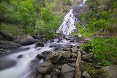 Cascata in foresta pluviale Fotografia Stock Libera da Diritti