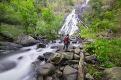 Cascata in foresta pluviale Immagine Stock Libera da Diritti
