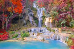 Cascata in foresta pluviale (Tat Kuang Si Waterfalls al praba di Luang Fotografie Stock Libere da Diritti
