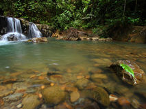 Cascata in foresta profonda Immagini Stock Libere da Diritti