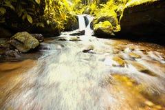 Cascata in foresta Tailandia Fotografia Stock