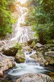 Cascata in foresta verde-cupo Fotografia Stock