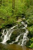 Cascata fumosa della montagna Fotografia Stock