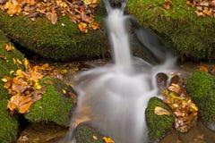 Cascata fumosa delle montagne di autunno Fotografia Stock