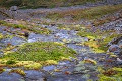 Cascata in ghiacciaio marziale in Ushuaia dettaglio di piccolo fiume immagini stock