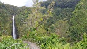 Cascata hawaiana immagini stock libere da diritti