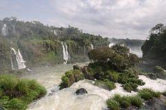 Cascata Iguacu Immagini Stock Libere da Diritti