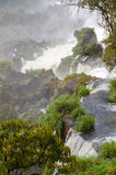 Cascata Iguacu Immagine Stock