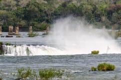 Cascata Iguacu Fotografia Stock
