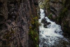 Cascata intatta scenica della montagna con acqua ghiacciata che scorre più Immagini Stock