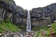 Cascata Islanda di Svartifoss Fotografie Stock
