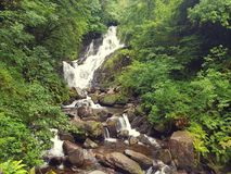 Cascata Kerry di Torc Fotografia Stock