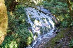 Cascata a Kew Mae Pan Immagini Stock Libere da Diritti