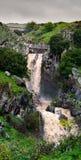 Cascata la Saar, Alture del Golan, Israele Immagine Stock Libera da Diritti