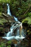 Cascata magica dell'acqua Fotografia Stock Libera da Diritti