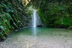 Cascata meravigliosa su una torrente montano in foresta Fotografie Stock