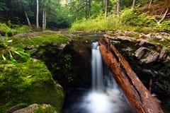 Cascata Michigan della gola del fiume del sindacato Fotografia Stock