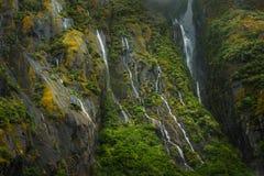 Cascata in Milford Sound, Nuova Zelanda Fotografia Stock
