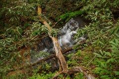 Cascata in montagna della Tabella Immagini Stock Libere da Diritti