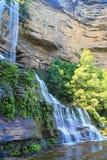 Cascata in montagne blu Australia Fotografie Stock