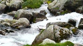 Cascata in montagne della Norvegia in tempo piovoso archivi video