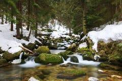 Cascata in montagne di un inverno immagine stock