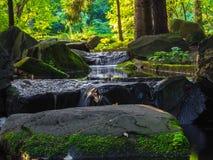 Cascata a Mosca, giardino giapponese Fotografia Stock Libera da Diritti