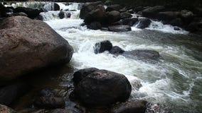 Cascata in Nakornnayok, Tailandia stock footage