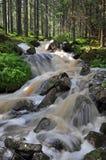 Cascata in natura svedese Fotografia Stock Libera da Diritti