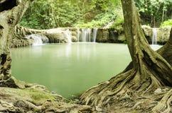 Cascata in natura Tailandia Fotografia Stock Libera da Diritti