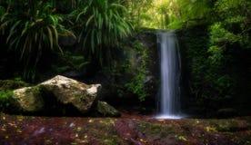 Cascata naturale Fotografia Stock